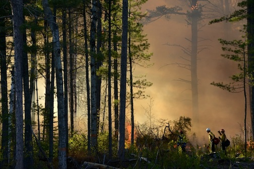 Controlled burn on Devil Track by Kathleen Gray-Anderson.