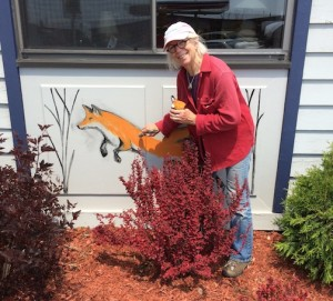 Betsy Bowen is painting foxes on the walls of the Arrowhead Pharmacy.
