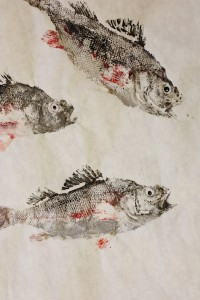 A fish print, or gyotaku.