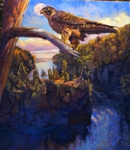 Painting of Peregrine Falcon by David Gilsvik.