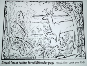 Anna Hess coloring page, Boreal Forest Wildlife, is available at Great Gifts at Lutsen.