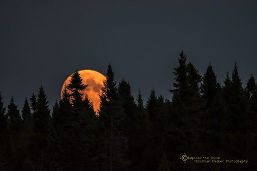 """Blood Moon from the Bog"" by Christian Dalbec."