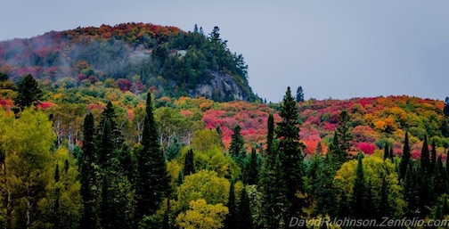 "Fall colors have finally arrived! David Johnson calls this ""Morning Mist at Cascade Bluff."""