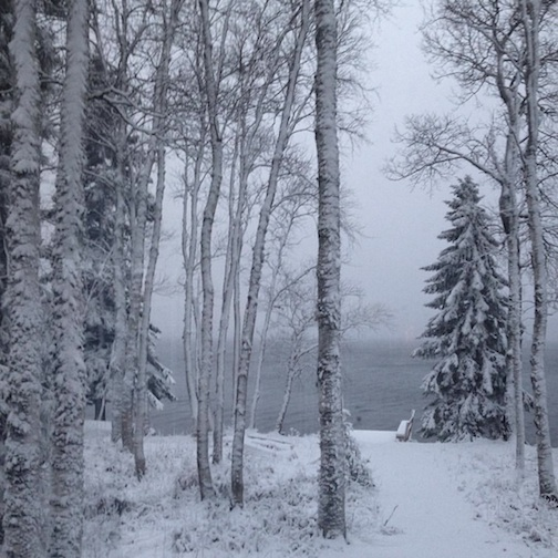 Danielle Fortin took this lovely photo of our first real snow on the North Shore on Wednesday.