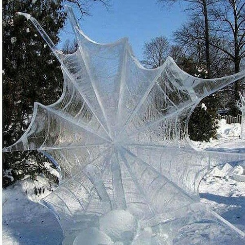 Frozen Spider Web by Pete Sals.