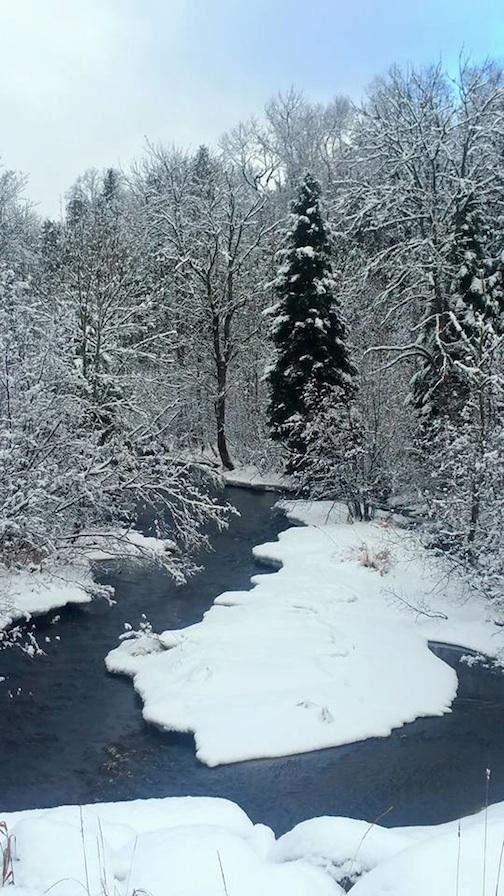 sierra parsons winter