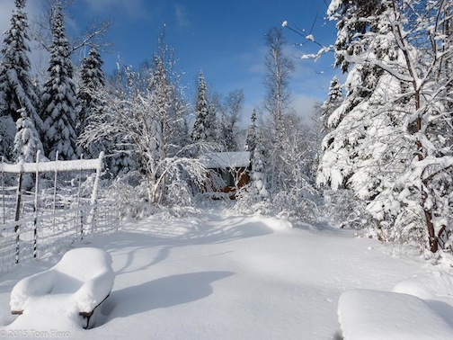 A White Christmas by Tom Fiero.