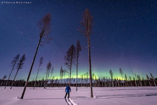 travis novitky northern lights