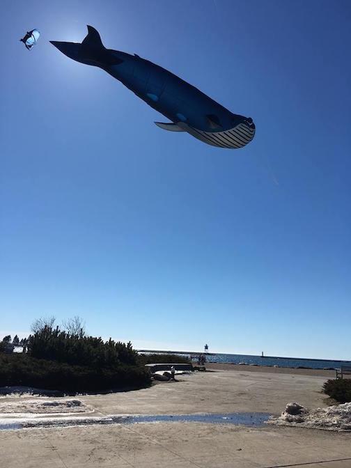 Lake Superior Whale Wathing by Matt Nesheim.