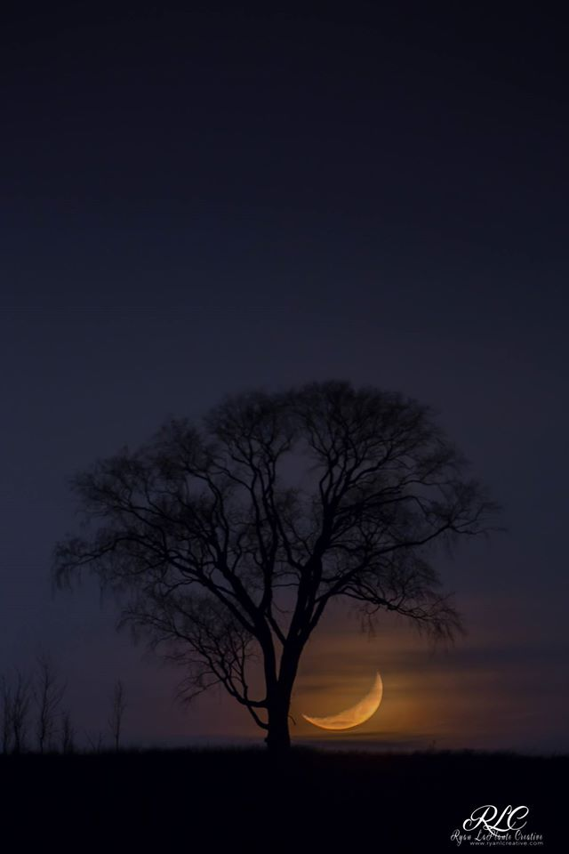 "Ryan LaPlante took this gorgeous photo the other night, He calls it ""Waxing Crescent Moonset."""