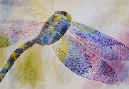 Dragonfly by Nancy Seaton.