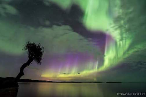 Travis Novitsky caught this outstanding photograph of the Northern Lights and the Spirit Tree on Mother's Day. Enjoy!