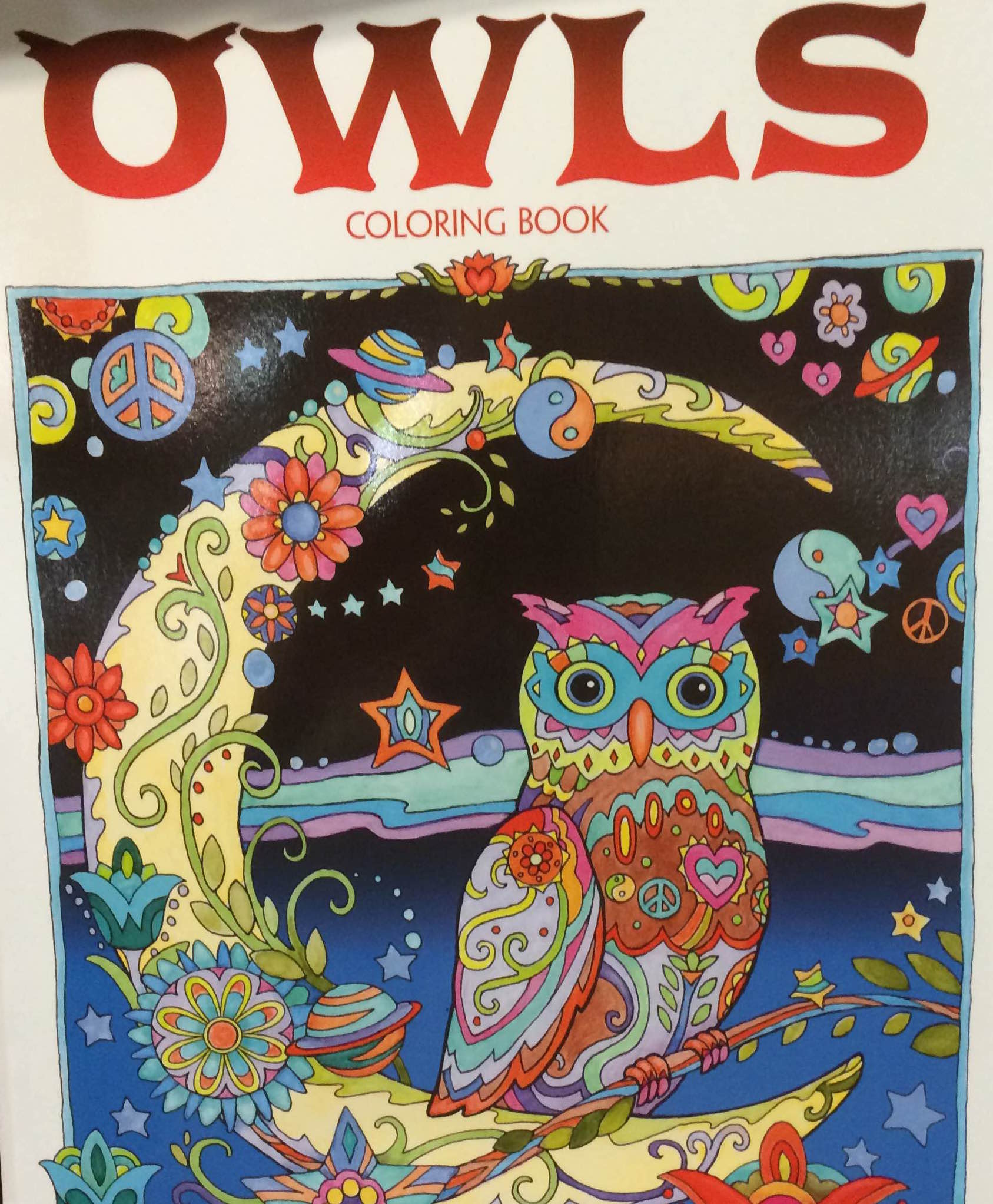 An owl coloring book at Birchbark Books & Gifts.