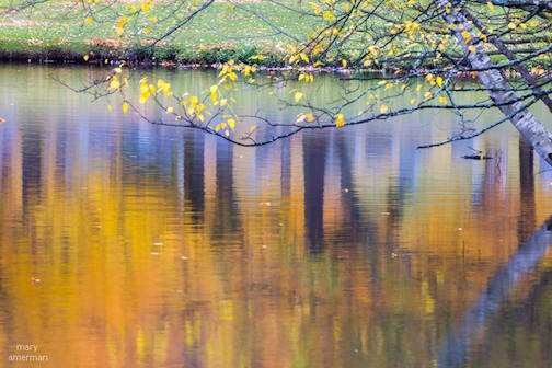 Fall reflections by Mary Amerman.