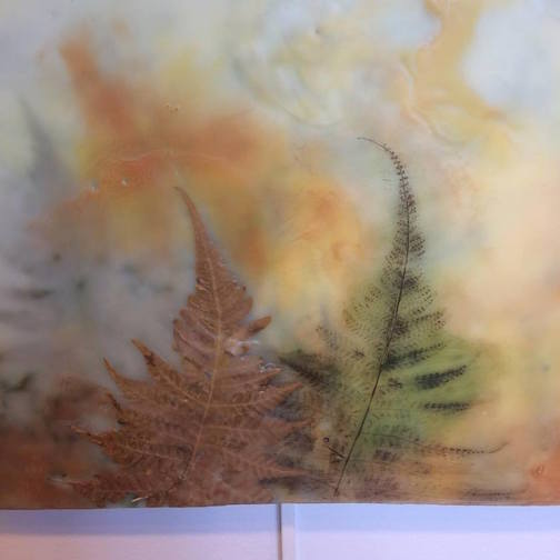 """Fenfall,"" beeswax, pigment, ferns by Nancy Daley."