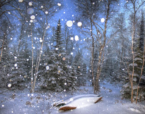 Snowfall by Don Davison.