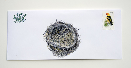 John schuerrman from+grasses+to+nest