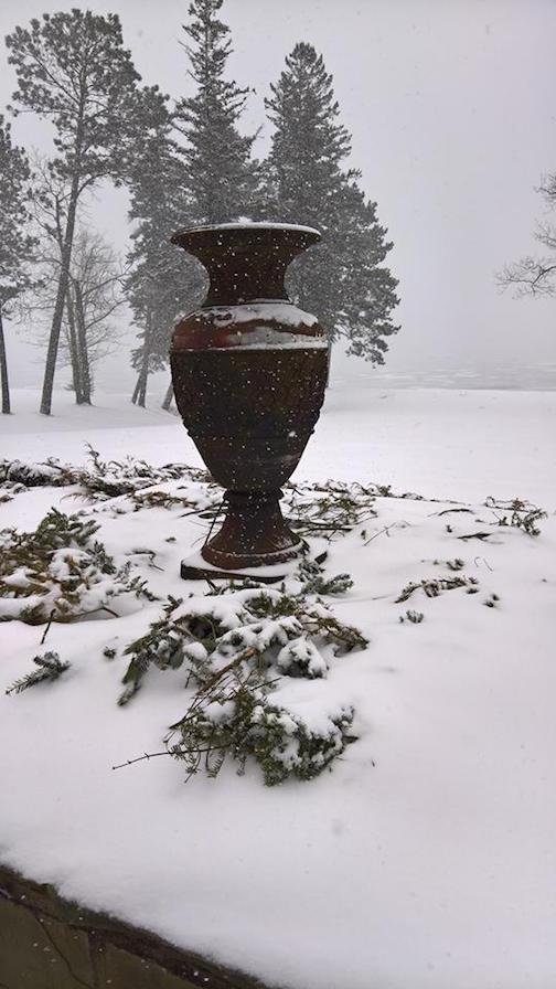 Gardens in Winter by Tom Kasper.