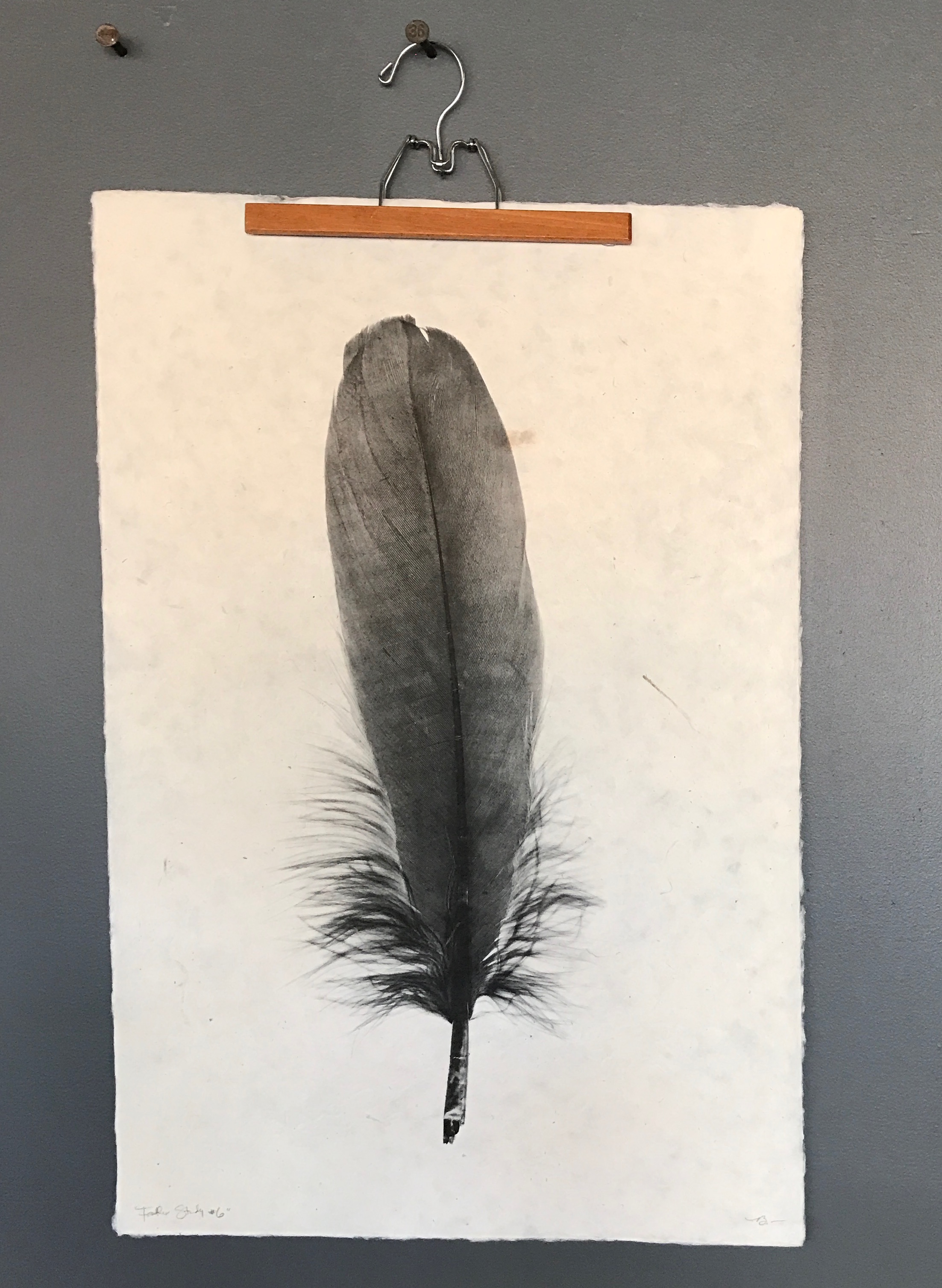 Feather Study #6, photograph on Nepalese paper by Dennis and Roy Borloga.