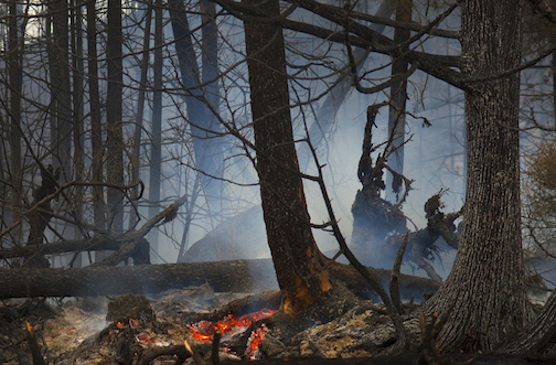 Ham Lake Fire by Layne Kennedy.