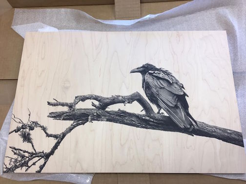 This print of a raven on wood by Nace Hagemann will soon be available at Kah-Nee-Tah Gallery in Lutsen.
