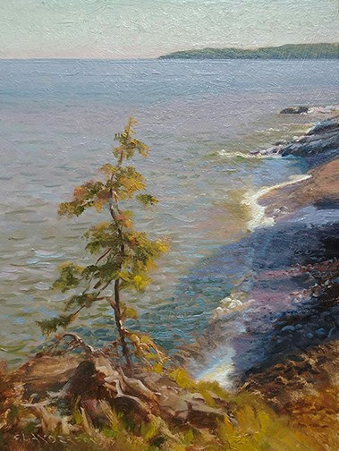 Lake Superior North Shore near the Cascade River by Scott Lloyd Anderson.