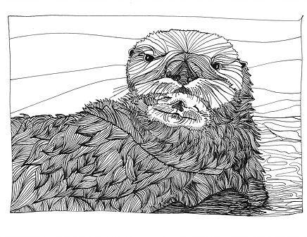 Otter by Jill Levene.