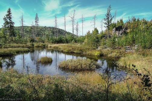 Magnetic Rock Trail by Tom Fiero.