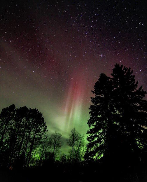 A nice aurora blast on the North Shore. Tofte. Nov. 7 by Thomas Spence.