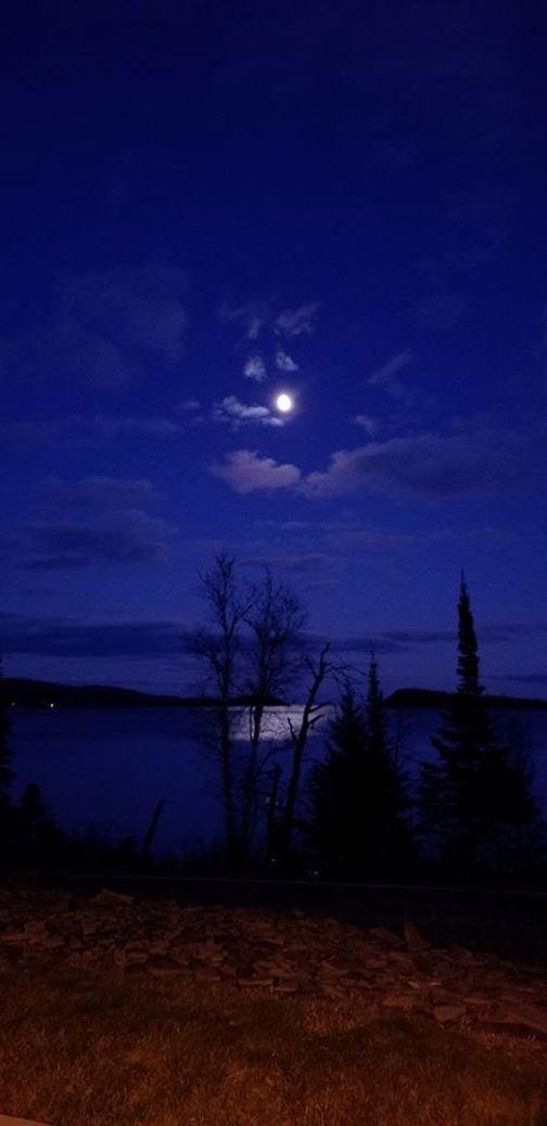 beth drost dark but lovely moon
