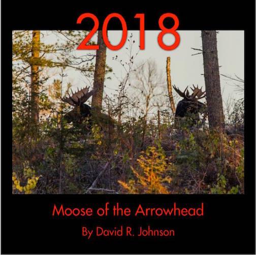 calendar david johnson