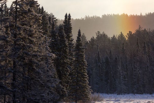 A sun dog close up in the Superior National Forest by Thomas Spence.