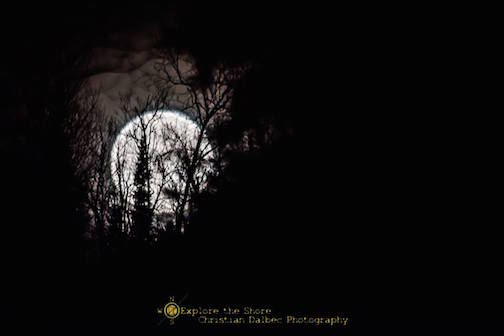 Just a Moon in a park - Split Rock State Park by Christian Dalbec.
