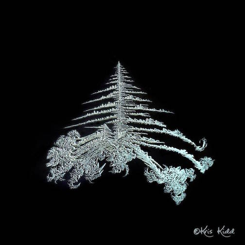 Frost on my window by Kris Tyrgg Kidd.