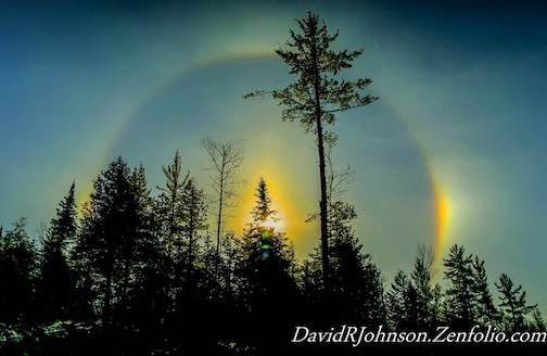 """Sun Dog by David Johnson."