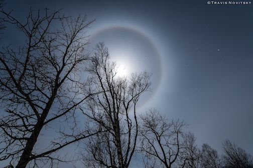 February Moon Ring by Travis Novitsky.