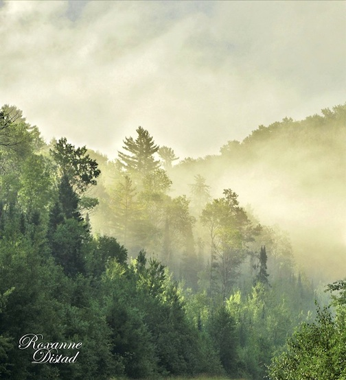 Along the Gunflint Trail by Roxanne Distad.