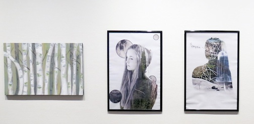 """Fresh Perspectives: Secondary School Art"" is currentl on exhibit at the Thunder Bay Art Gallery."