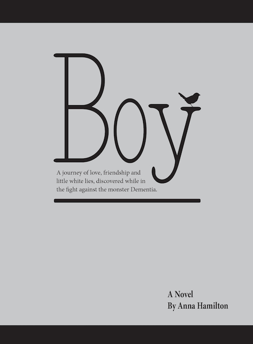 Anna Hamilton boy front book cover (1)
