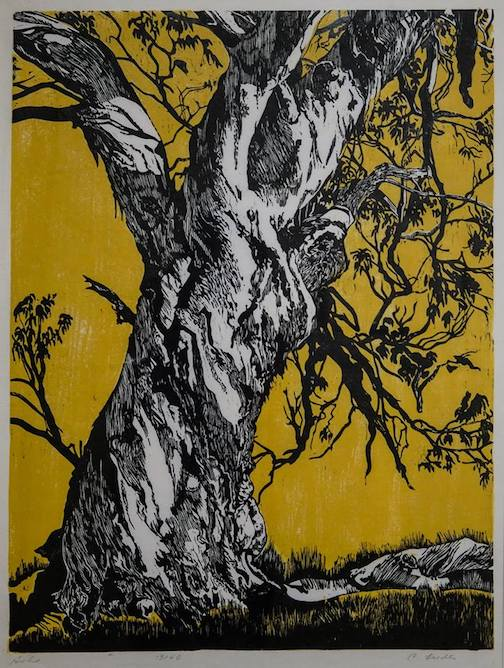 """Ash,"" print by Cecilia Lieder, is at the Tweed Museum of Art as part of the"