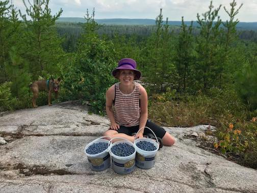 Corey Cochrane went picking with her parents and they came up with these three buckets of blueberries. Yum!