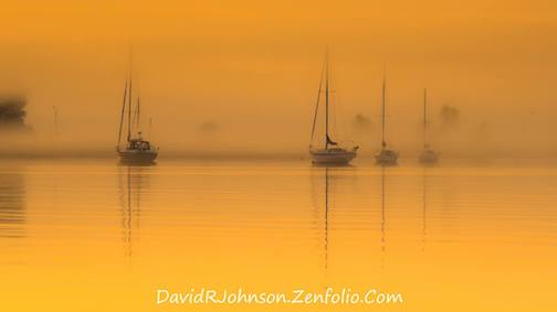 Golden Fog by David Johnson.