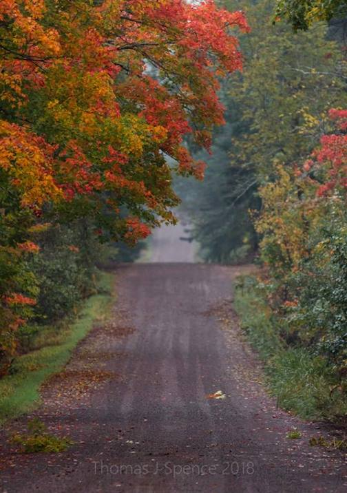 Last weekend on the North Shore back roads by Thomas Spence.