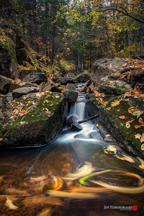 It was raining leaves in the woods today by Jeff Henningsgaard.