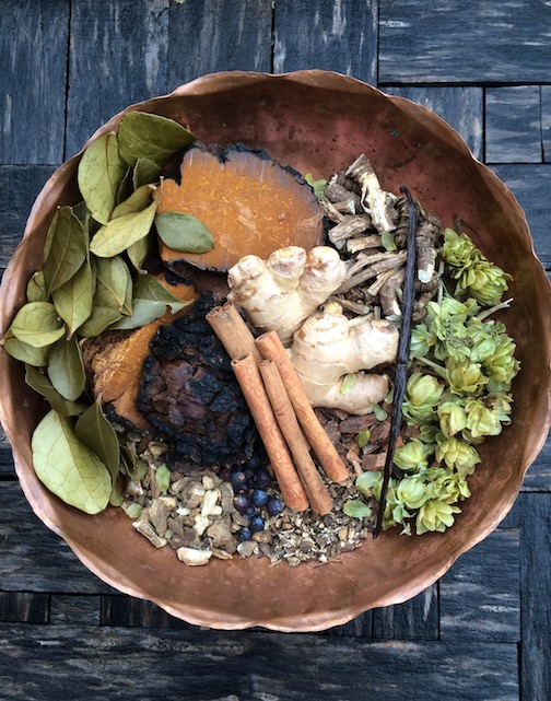 Handcrafting root beer from wild ingredients will be demonstrated at North House Folk School in a skillshare workshopNov. 1.