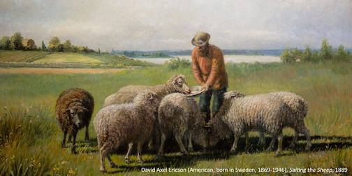 Salting the Sheep by David Axel Ericson is on view at the Tweed Museum of Art, part of the Quiet Simplicity exhibit there.
