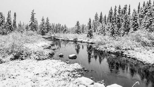 Snowfall at Four-Mile Creek by Thomas Spence.