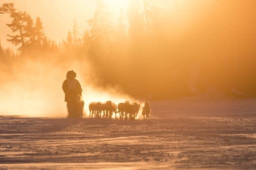 The Gunflint Mail Run Sled Dog Race is set to start at 9 a.m. on Saturday, Jan. 5. Nace Hagemann took this great photo at last year's race.