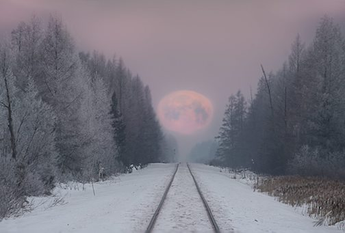 Super Snow Moon was on the midnight shift, going to sleep for the day by Matt Herberg.
