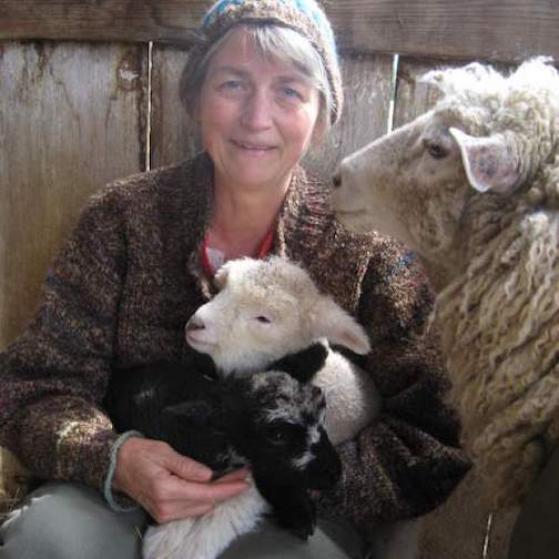 Mary Owen will give a Lunch and Learn session at North House Folk School at noon on Friday.